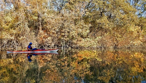 Kayaking Cosumnes RIver