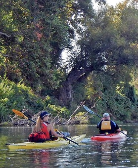 Kayaking the Sacramento River