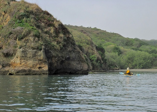 kayaking Bodega Bay