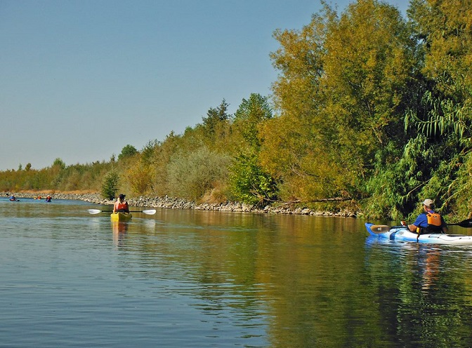 kayaking sacramento river